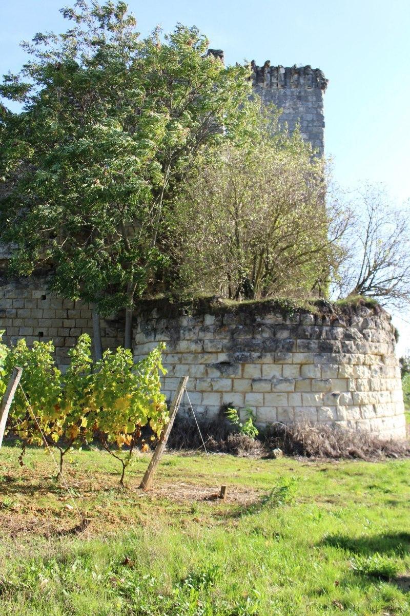 Les-ruines-de-la-tour-de-Beaumont