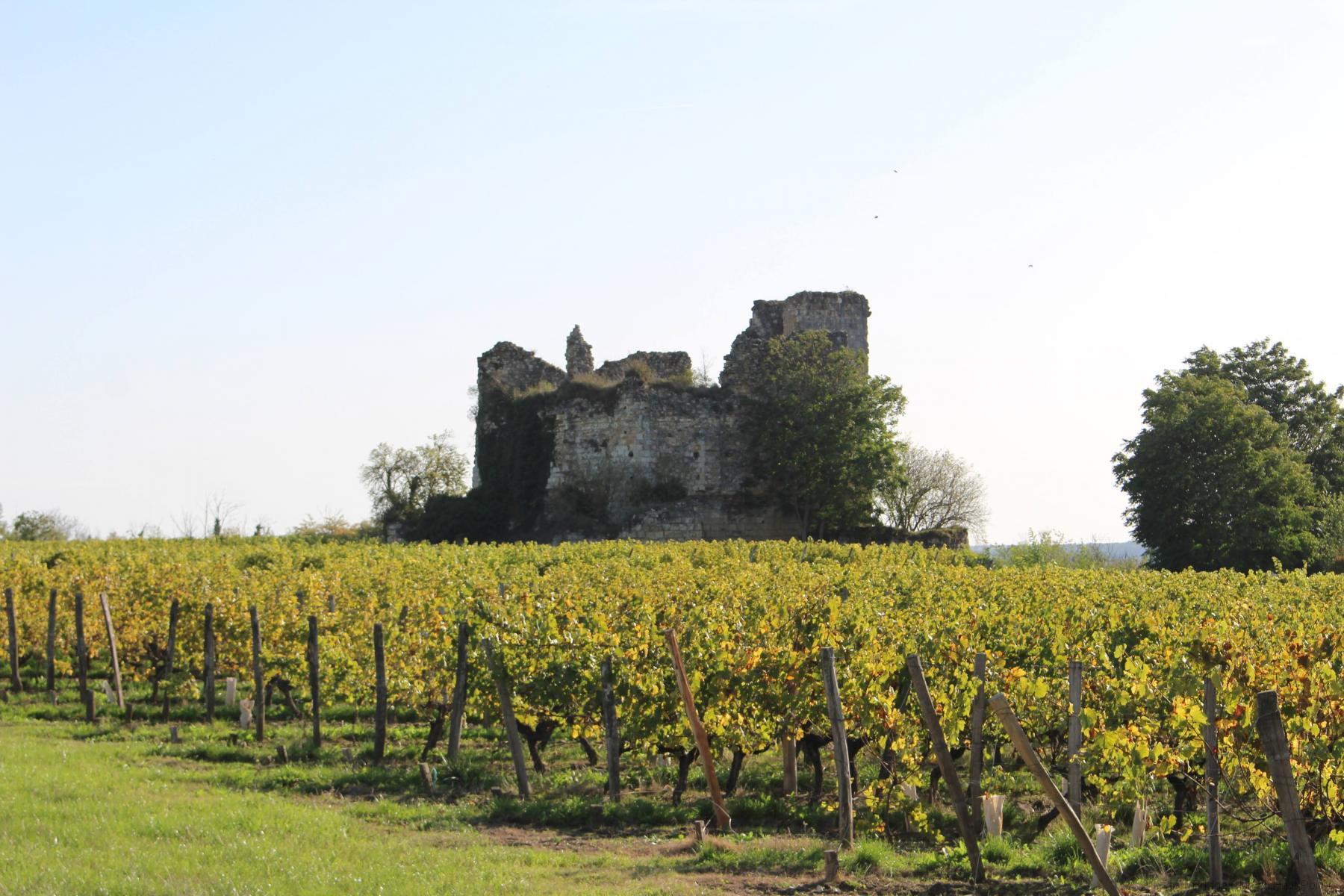Les-ruines-dites-de-«-La-Tour-de-Beaumont-»